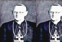 Mgr Jacques Franciscus Maria Pessers SVD