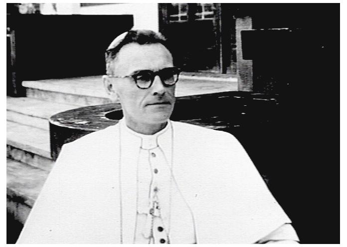 Mgr. Theodorus Fransiskus Maria van Den Tillart SVD